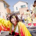 Photos: 銭形よさこい2018 岡山うらじゃ連環温