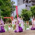 にっぽんど真ん中祭り2018 和鸞 -waran-