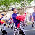 にっぽんど真ん中祭り2018 バサラ瑞浪