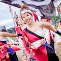 写真: こいや祭り2018 絆百祭