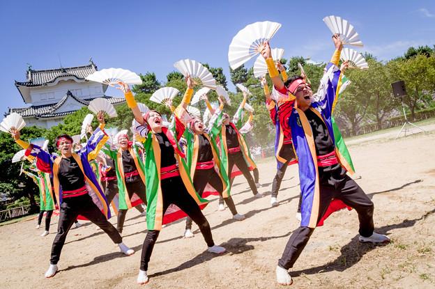 にっぽんど真ん中祭り2018 笠寺いちり