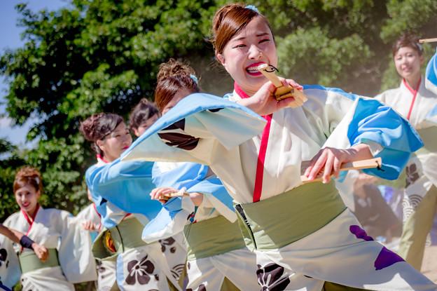 にっぽんど真ん中祭り2018 MAIYA