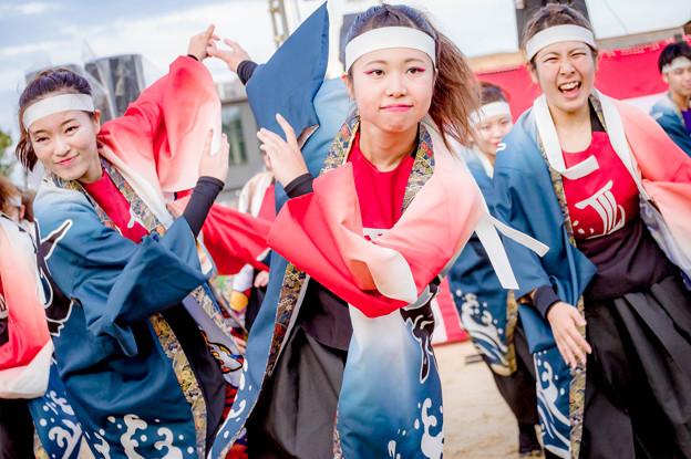 """こいや祭り2018 小樽商科大学""""翔楽舞"""""""