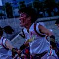 こいや祭り2018 早稲田大学踊り侍