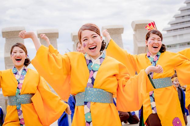 神戸アライブ2018 神戸大学よさこいチーム山美鼓