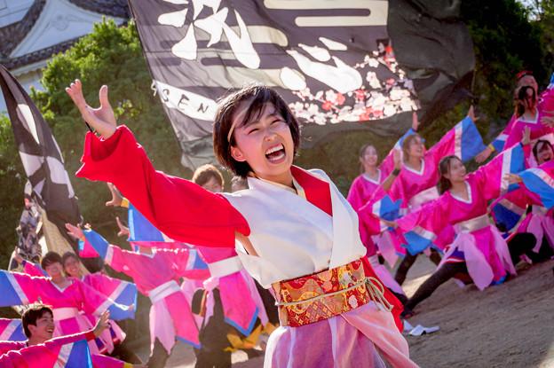 にっぽんど真ん中祭り2018 近畿大学よさこい連洗心