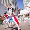Photos: みちのくYOSAKOIまつり2018 TEAM SAKURA