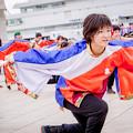 Photos: 神戸アライブ2018 よさこいチーム炎~ほむら~