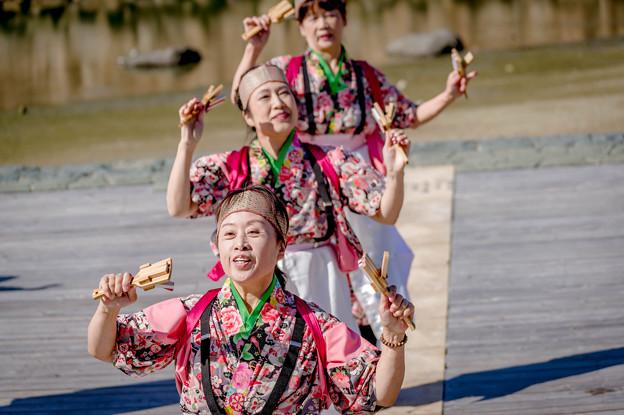 ゑぇじゃないか祭り2018 朱嵐&花水木