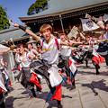 """Photos: 龍馬よさこい2018 早稲田大学""""踊り侍"""""""