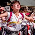 """写真: 龍馬よさこい2018 早稲田大学""""踊り侍"""""""
