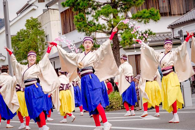 赤穂でぇしょん祭り2018 舞ぇぇ華