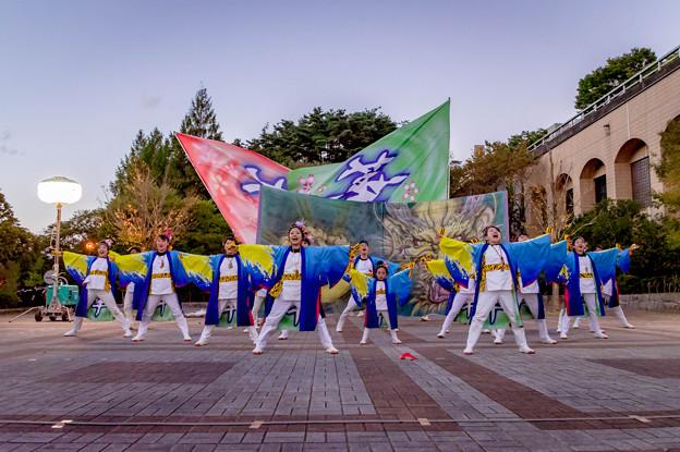 Photos: みちのくYOSAKOIまつり2018 『華・from KAMI』