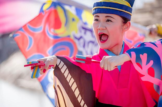 Photos: ゑぇじゃないか祭り2018 とらっくよさこい(ちふれ)