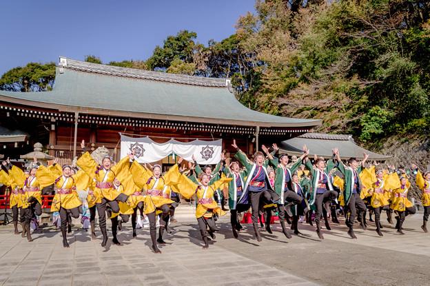 龍馬よさこい2018 京炎そでふれ!輪舞曲