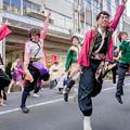 バサラカーニバル2018 よさこいチーム花樂