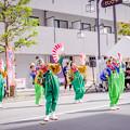 Photos: 踊っこまつり2019 破天荒