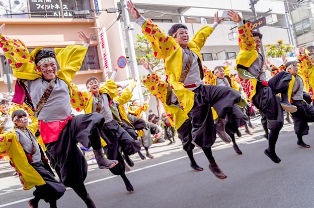 "Photos: 踊っこまつり2019 関西大学学生チーム""漢舞"""