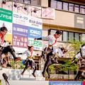 Photos: 踊っこまつり2019 必~いっしん~
