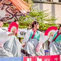 踊っこまつり2019 クラーク高校 「百花繚乱」