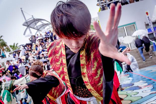 Worldあぽろん2019 京都文教大学よさこいサークル風竜舞伝
