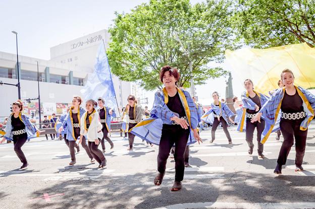 Photos: よさこいinおいでん祭2019 ?志