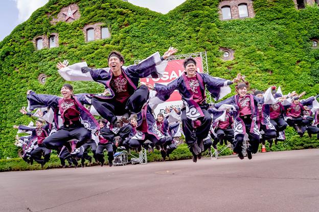 YOSAKOIソーラン祭り2019 長崎大学「突風」