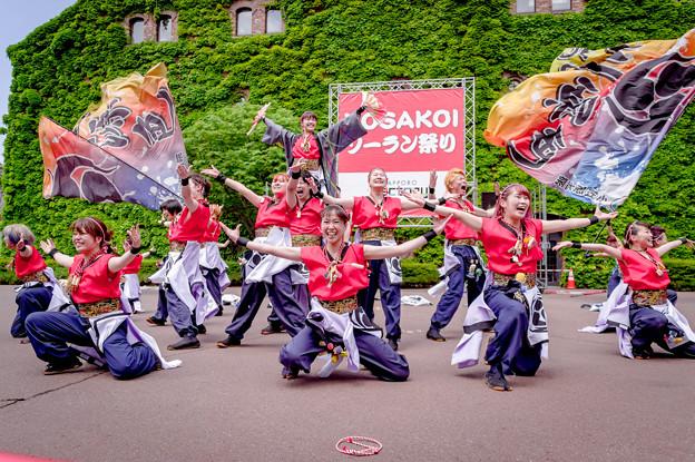 YOSAKOIソーラン祭り2019 北里三源色