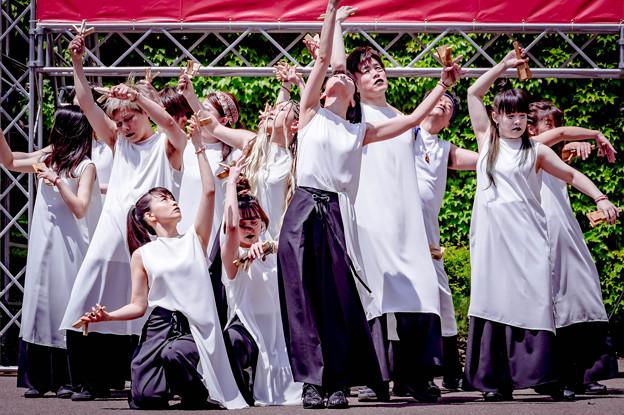 YOSAKOIソーラン祭り2019 Gush neo