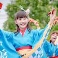 Photos: 堺よさこいかえる祭り2019 彩鳴