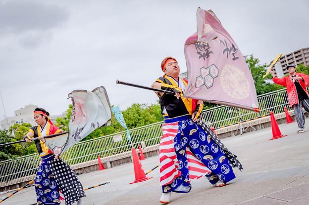 堺よさこいかえる祭り2019 よさこいち~夢笑輝