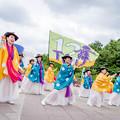 Photos: 堺よさこいかえる祭り2019 12Twel舞