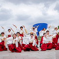 Photos: 堺よさこいかえる祭り2019 桃山学院大学よさこい連「真輝-SANAGI-」
