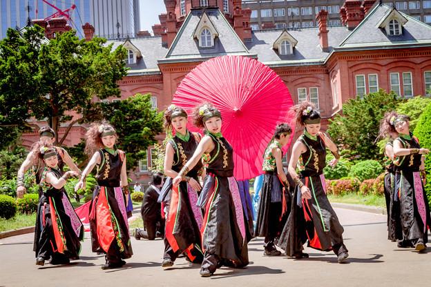 YOSAKOIソーラン祭り2019 朱雀