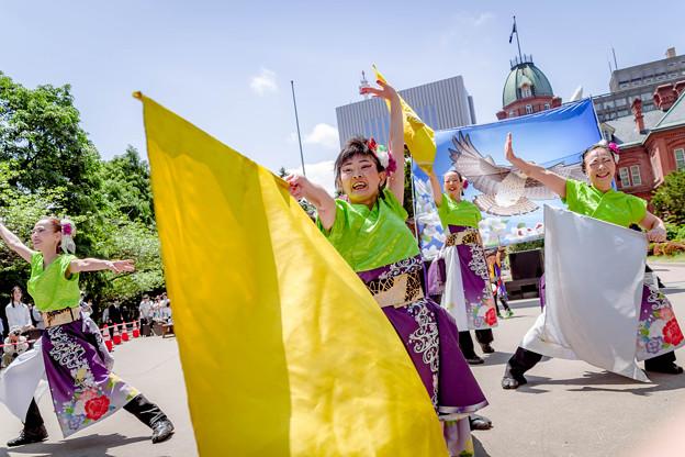 YOSAKOIソーラン祭り2019 いなぎ藍の風