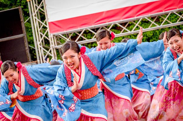 YOSAKOIソーラン祭り2019 井原水産&北星学園