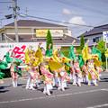 斐川だんだんよさこい2019 ひらた踊らにゃSONSON