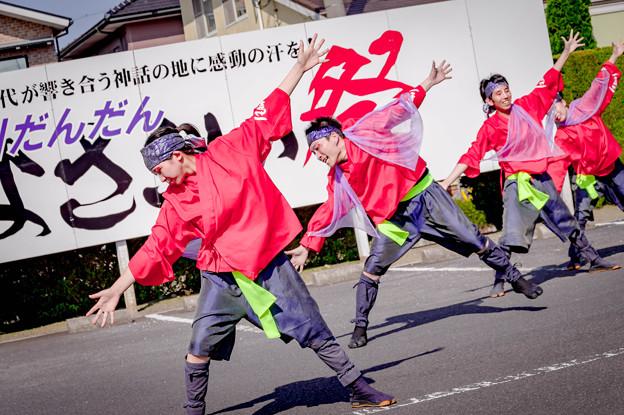 斐川だんだんよさこい2019 和笑~なごみ~