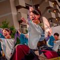 Photos: うらじゃガーデンナイト2019 魄夜-byakuya-