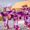 Photos: ござれGO-SHU!2019 江州大舞隊