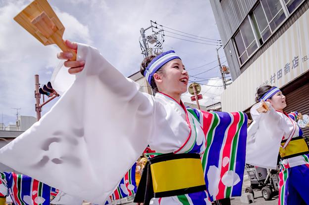 高知 よさこい 祭り 2019