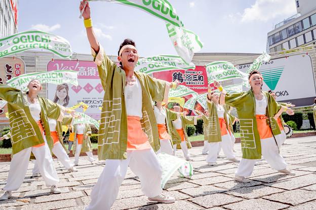 にっぽんど真ん中祭り2019 SAIKA-菜花-