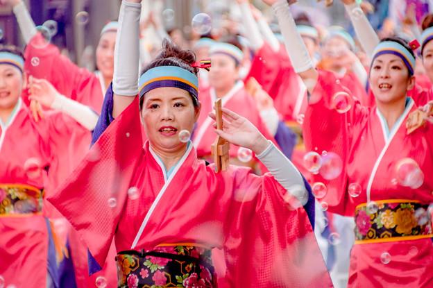よさこい祭り2019 総合クラブとさ「青龍」 愛宕競演場