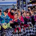 よさこい祭り2019 百物語 愛宕競演場