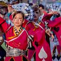 Photos: よさこい祭り2019 百物語 愛宕競演場