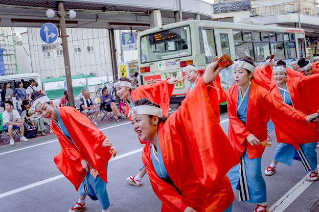 よさこい祭り2019 よさこい鳴子連今日一屋 愛宕競演場