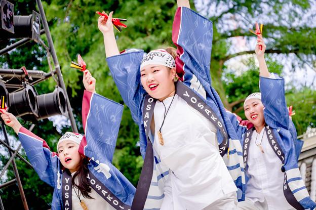 よさこい全国大会2019 YOSAKOI JAPAN~祭育~