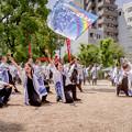 Photos: にっぽんど真ん中祭り2019 チームリクルート