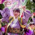 Photos: にっぽんど真ん中祭り2019 あぐい騰