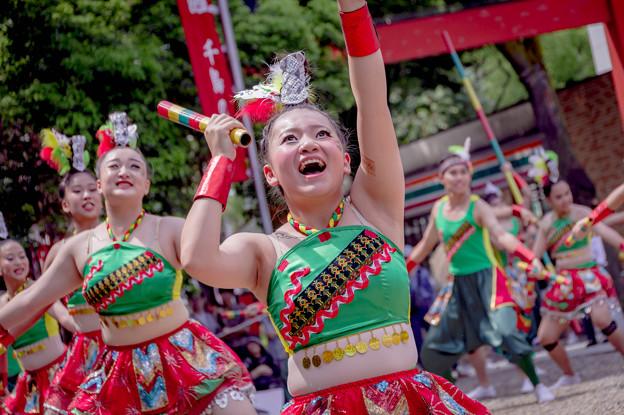 にっぽんど真ん中祭り2019 Time for Taiwan